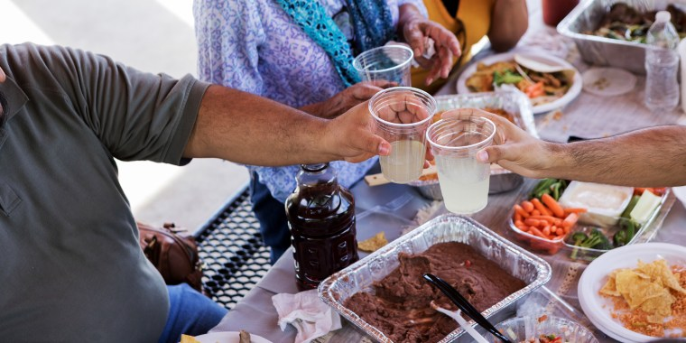 Family members toast during picnic