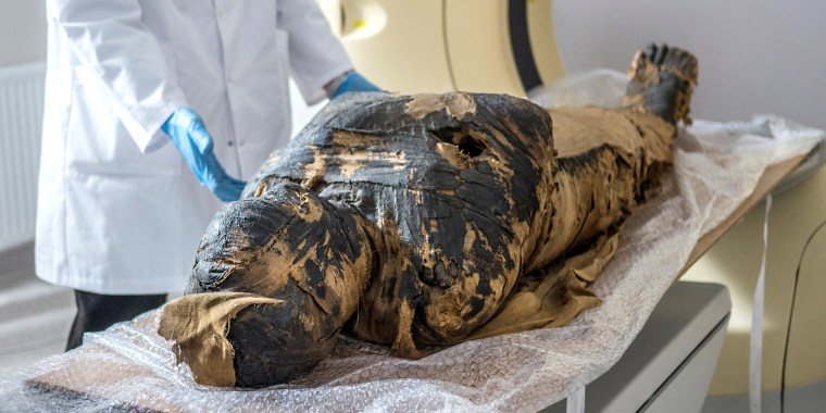 Image: A scientist makes CT scan of a pregnant Egyptian mummy during a research work in this undated handout photo