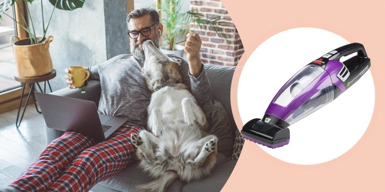 Looking to remove pet hair from your home? Shop the best pet hair removal tools including vacuums, brushes, and rollers from Bissell, Dyson and more.