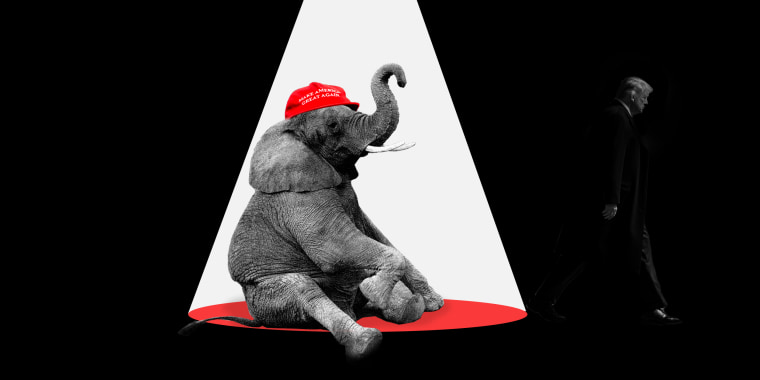 """Photo illustration: An elephant sits under the spotlight wearing a red hat that reads,\""""Make America Great Again\"""" as Donald Trump walks into the shadow.."""