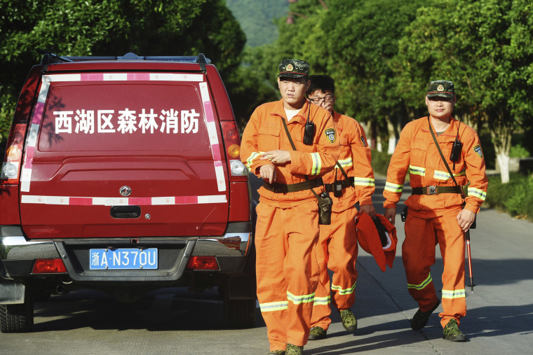 Image: Workers take part in a search for a runaway leopard in Hangzhou in eastern China's Zhejiang province