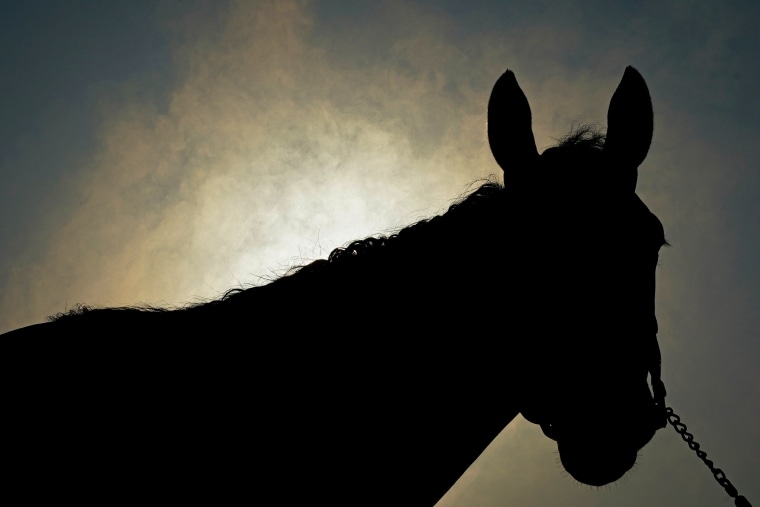 Image: 147th Kentucky Derby preparation at Churchill Downs in Louisville, Kentucky