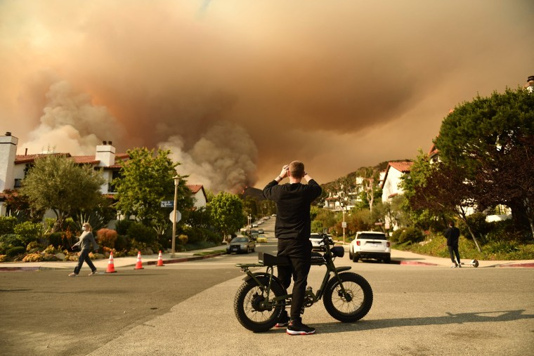 Image: A man takes a photo of the plume of smoke created by the Palisades fire in Topanga State Park, North West of Los Angeles