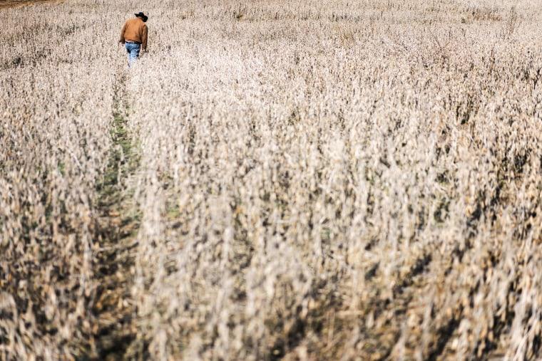 Image: Partial Government Shutdown - soybean subsidies