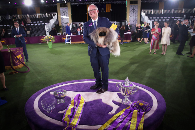"""David Fitzpatrick holds his Pekingese """"Wasabi"""" after winning the Best in Show at the 145th Westminster Kennel Club Dog Show at Lyndhurst Mansion in Tarrytown, N.Y., on June 13, 2021."""