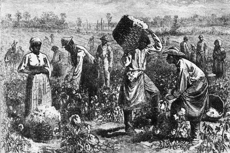 Image: Cotton Slaves