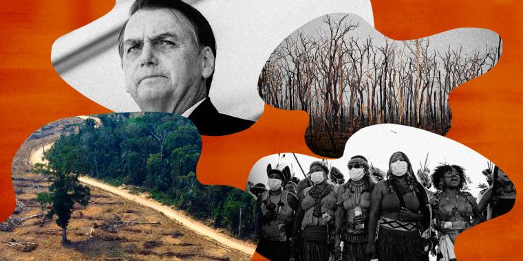 Illustration shows Brazilian President Jair Bolsonaro, deforestation in the Amazon, and indigenous groups protesting.