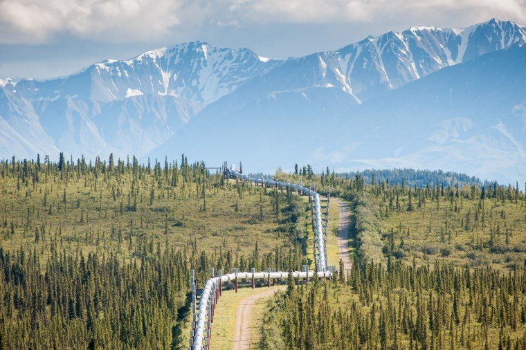 Imae: Trans-Alaska Pipeline