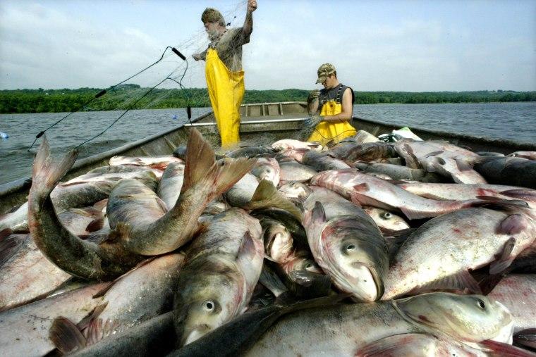 BRINEY FISHER *{89179B17-2003-4D4B-A24A-537F0132D0F1}*