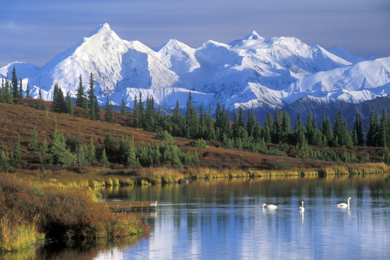 Image: The Alaska Range with Mount McKinley and Wonder Lake with Tundra swans in the fall.