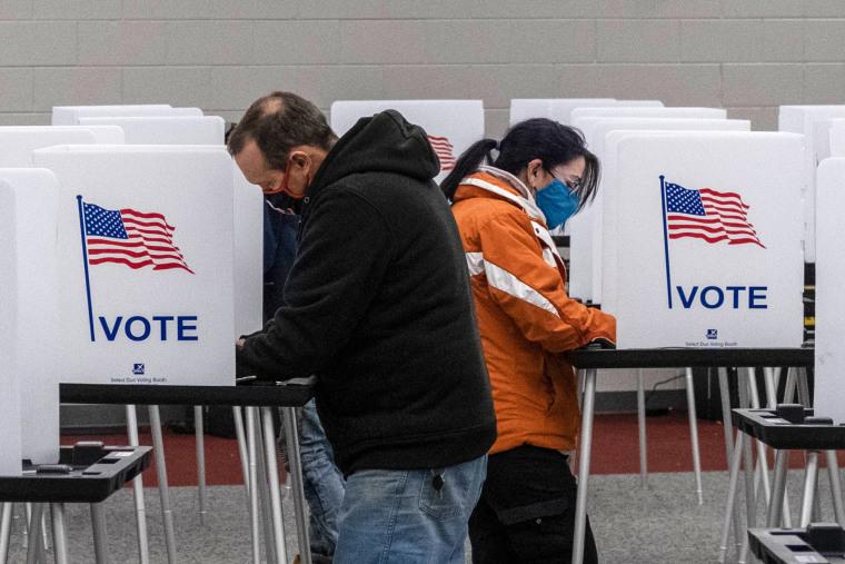 Image: Michigan vote