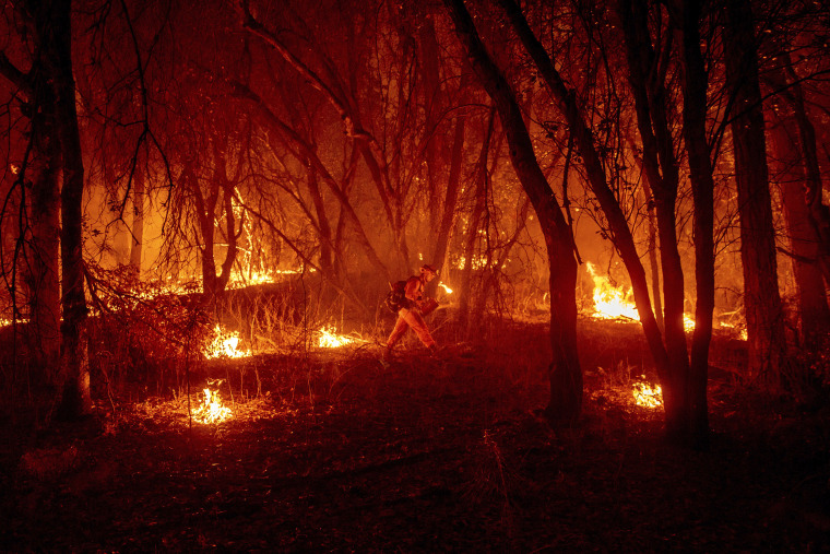 Image: An inmate firefighter from the Trinity River Conservation Camp uses a drip torch to slow the Fawn Fire