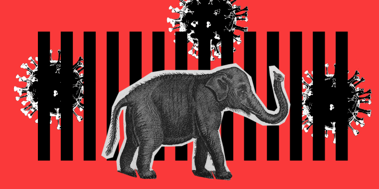 Photo illustration: A cut out of an elephant walking on one side of a fence. Covid spores are floating on the other side.