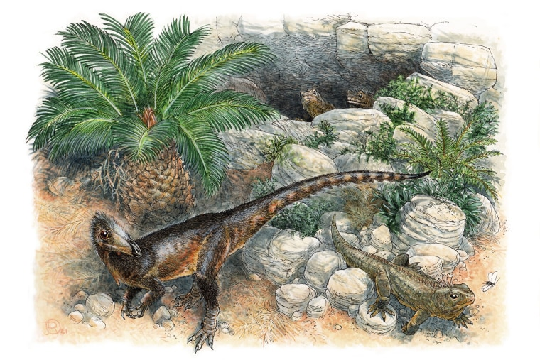 Pendraig milnerae was a small species of carnivorous dinosaur, living in what is now southern Wales.