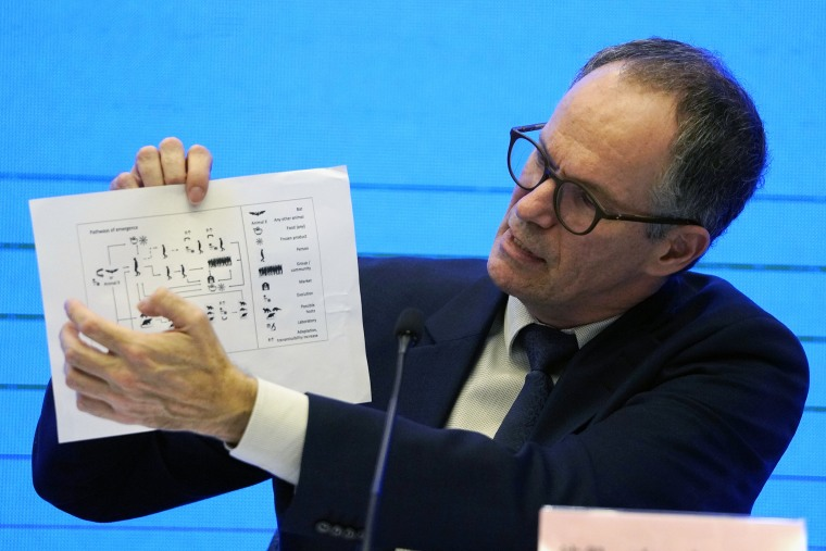 Peter Ben Embarek of the World Health Organization team holds up a chart showing pathways of transmission of the coronavirus during a news conference at the end of the WHO mission in Wuhan in central China's Hubei province on Feb. 9.