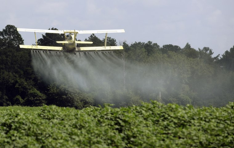 A crop duster sprays a field in Alabama on Aug. 4, 2009.