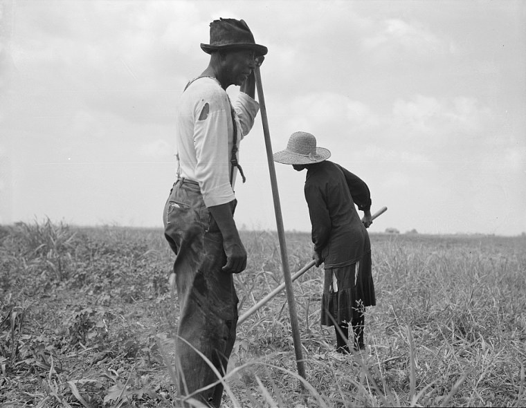 Cotton sharecroppers in Greene County, Ga., June 1937.
