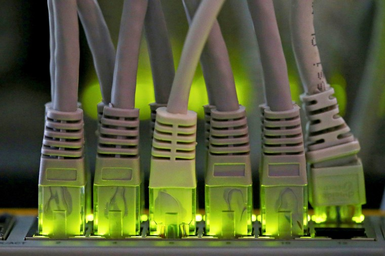 FILE PHOTO: LAN network cables plugged into a Bitcoin mining computer server are pictured in Bitminer Factory in Florence