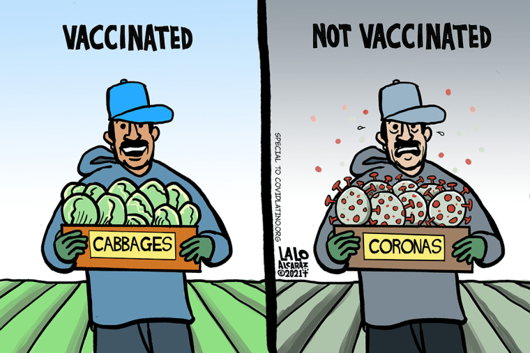 Image: One of Alcaraz' cartoons for CovidLatino.org compares a vaccinated and non-vaccinated Latino farm worker.