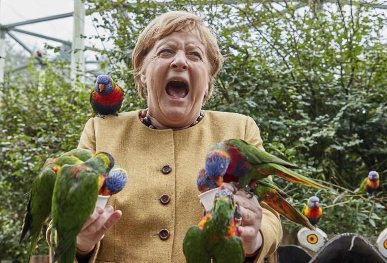 German Chancellor Angela Merkel feeds Australian lorikeets at Marlow Bird Park in Marlow, Germany, on Thursday.