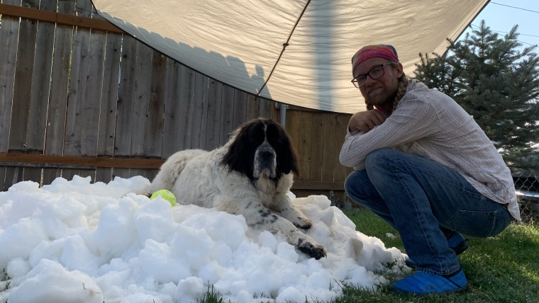 A giant white and black dog sits on a pile of snow next to a man with pigtails under a bandana, in jeans and a long sleeved shirt.