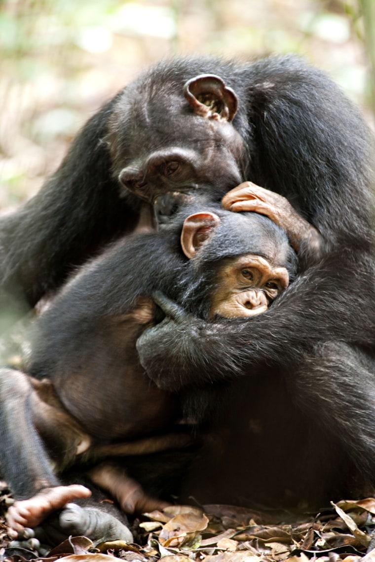 Isha hugs her son, Oscar