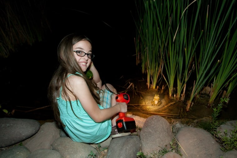Bring your own light to the summer Flashlight Tours at the Desert Botanical Garden in Phoenix to discover what happens when the sun goes down.