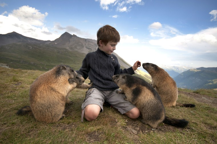 """If you like animals, even wild animals, they can come to you,"" says schoolboy Matteo's mother Michaela."