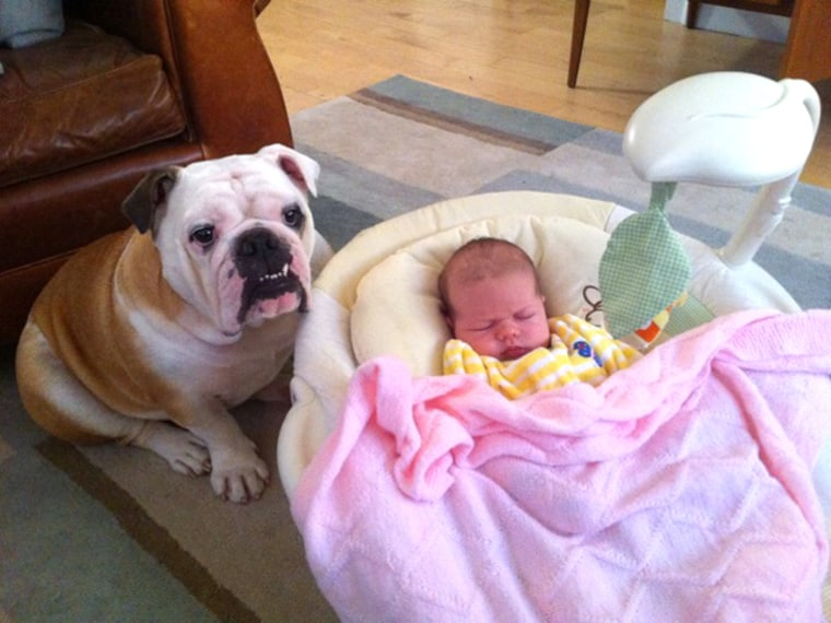 """Barclay Barnes poses next to his new """"sister"""" Margaret Claire. In the three months since Margaret was born, Barclay packed on five pounds."""