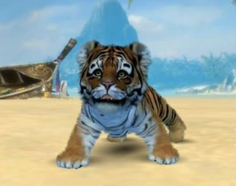 Your very own adorable exotic kitten will soon be able to live both on your Windows Phone and your Xbox 360.
