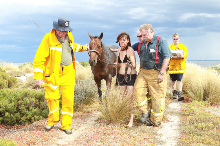 Feature Rates Apply.Mandatory Credit: Photo by Newspix/Rex / Rex USA (989619p)Nicole Graham leads her 18-year-old horse 'Astro' away from the beach after members of the Country Fire Authority (CFA) and the State Emergency Services (SES) successfully freed the 500kg horse after he became stuckHorse rescued from thick mud at Avalon Beach in Geelong, Victoria, Australia - 26 Feb 2012Saved from tidal terrorIT was a race against the tide that pulled at the heartstrings. For three hours yesterday, show horse Astro was stuck neck deep in thick mud at Avalon Beach on Corio Bay as the tide inched closer. Rescue crews first tried to pull the 18-year-old, 500kg horse free with fire hoses, and then a winch before a vet turned up to sedate Astro and pull him clear with a tractor. The crews knew by 5pm the tide would have come all the way in. But within minutes of the waters rising around him, Astro was being dragged up on to solid ground slowly but surely, the team filthy but ecstatic. Owner Nicole Graham (above) said she and daughter Paris, 7, set off at noon when without warning she sunk up to her waist in thick, smelly muck.