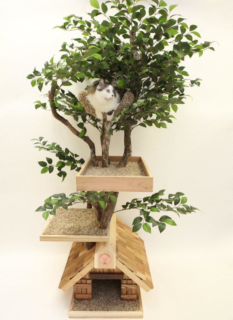 Let your cat explore their wild side with these trees.