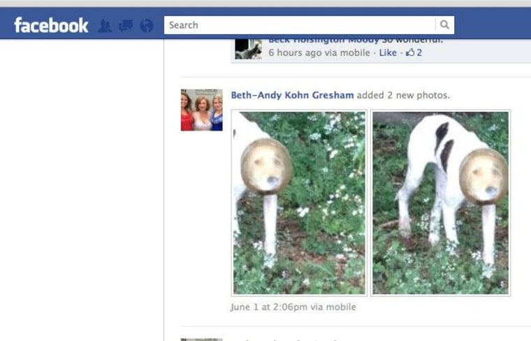Beth-Andy Kohn Gresham's photos, shared on Facebook, along with her callout for help, generated a huge response.