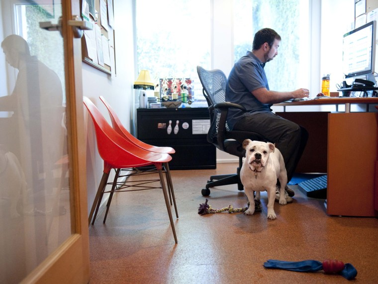 Will you be bringing your dog to work on Friday?