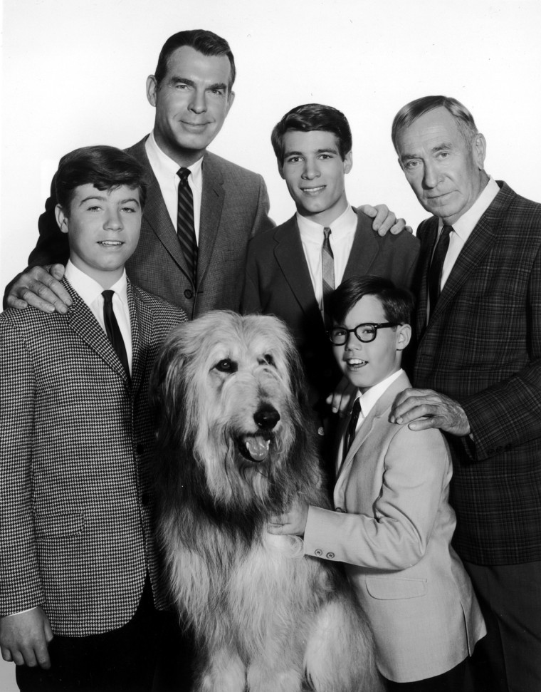 """The cast of """"My Three Sons"""" in 1965 included Stanley Livingston, Fred MacMurray, Don Grady, William Demarest, and Barry Livingston."""