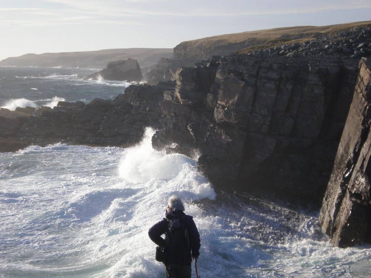 Waves crash against Newfoundland's rocky shore at Mistaken Point Ecological Reserve.
