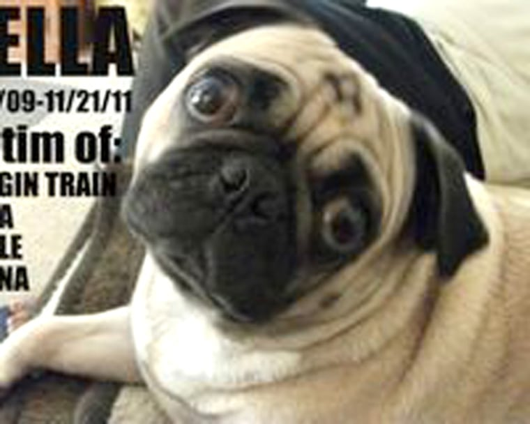 Bella, a 2-year-old pug, died last fall after her owner, Robin Pierre, said she ate Waggin' Trail chicken jerky treats.