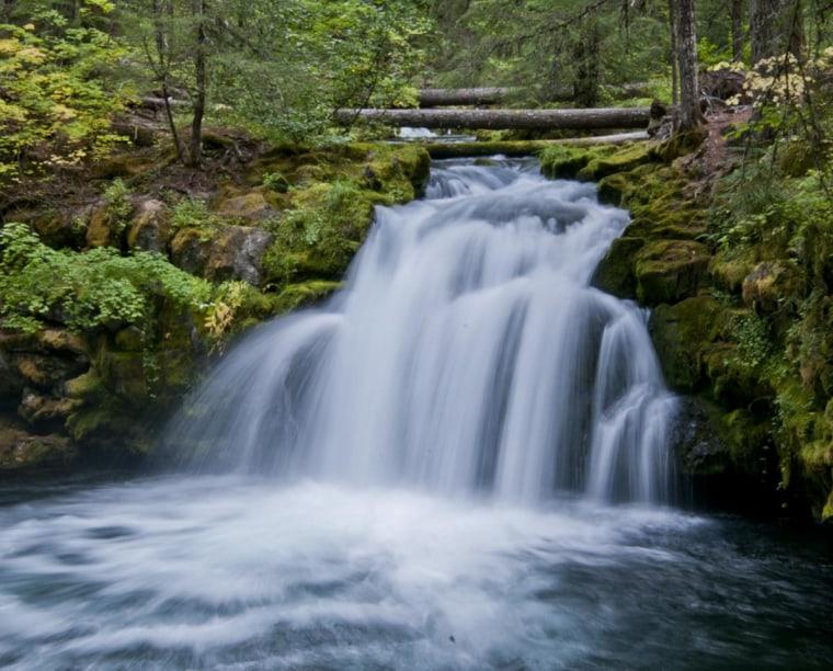 Whitehorse Falls on the North Umpqua River in Oregon.