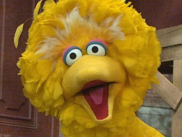Big Bird of Sesame Street
