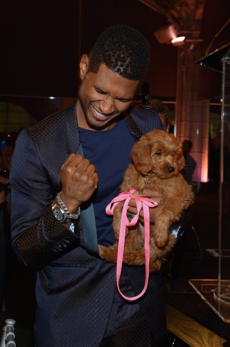 Honoree Usher Raymond IV holds the puppy he bought at the second annual Pencils of Promise Gala at Guastavino's on Oct. 25 in New York.
