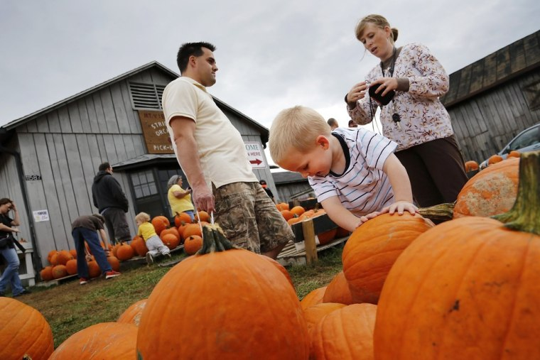 Two-year-old Charles Kearley helps his parents shop for pumpkins at Stribling Orchard in Markham, Va. Consumers have been feeling better about the economy in recent weeks.