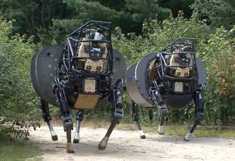 Image of AlphaDogs