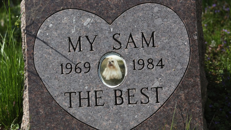 A gravestone marks a pet's final resting place at the Hartsdale Pet Cemetery in Hartsdale, N.Y.