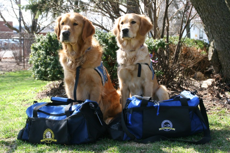 Comfort dogs Ruthie and Luther ready and waiting with their bags packed for Boston.