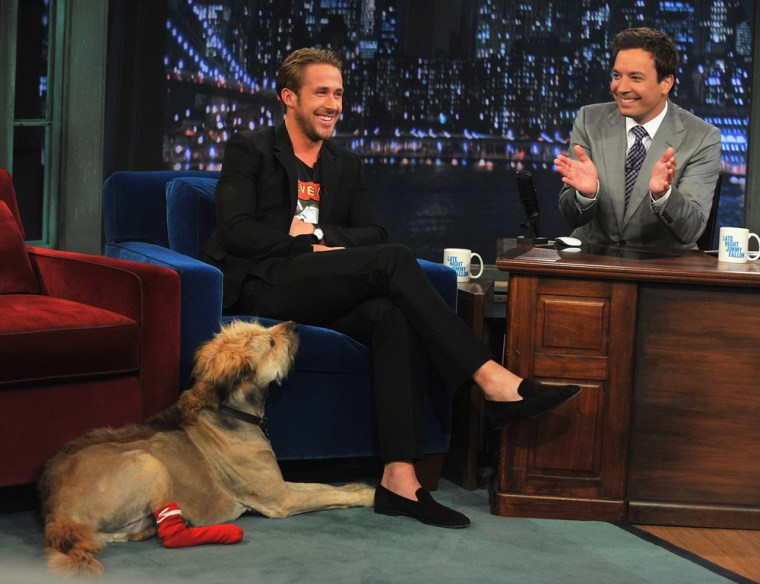 "Ryan Gosling and his dog George on the set of ""Late Night With Jimmy Fallon"" at Rockefeller Center on July 20 in New York."