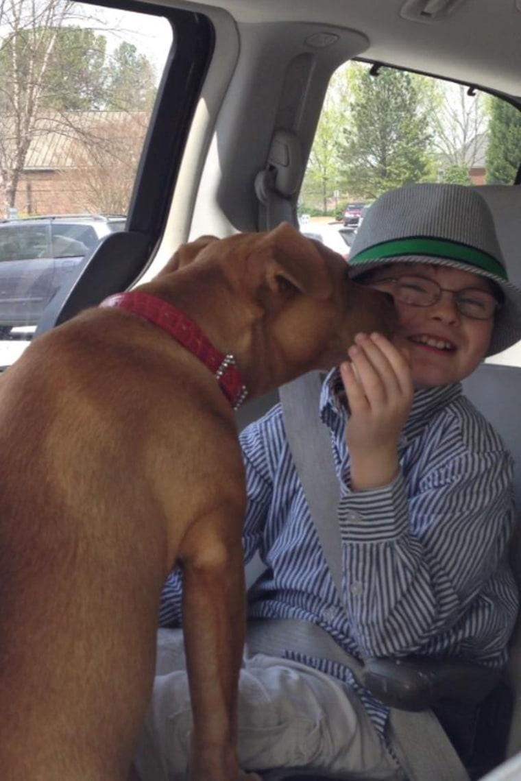 Image: Jonny Hickey and Xena the Warrior Puppy