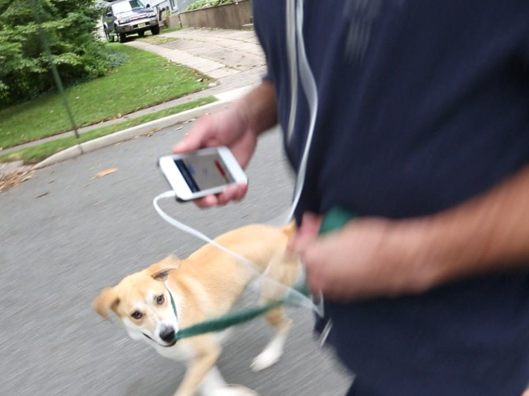 """NBC producer Robin Oelkers walks his dog while on his iPhone, which, said our expert, is """"basically a tracking device."""""""