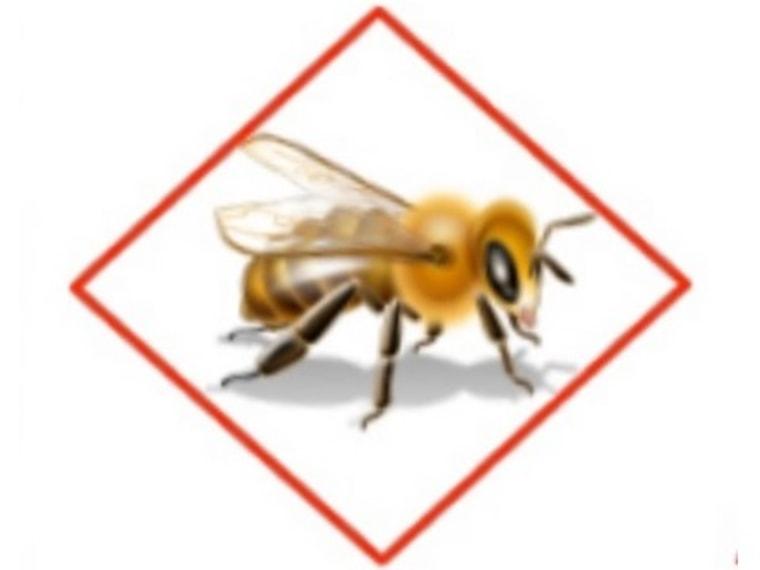 Image: Bee icon