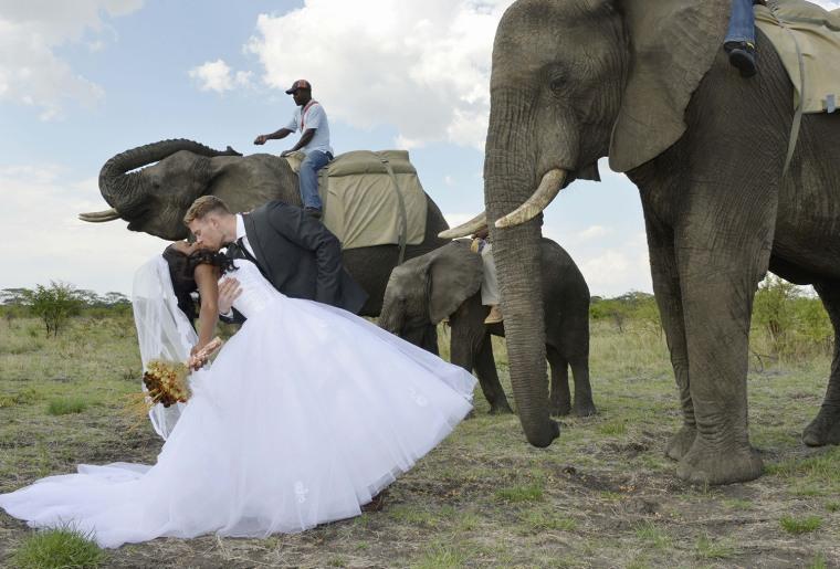 Corey and Lynette wedding