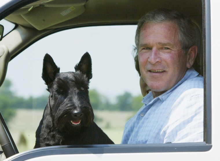 U.S. President George W. Bush sits in his  truck with dog Barney, while vacationing on his ranch in Crawford, Texas on Aug. 13, 2003.